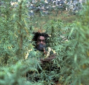 HAPPY 420! IN THE WORDS OF THE LATE GREAT PETER TOSH #LegalizeIt http://t.co/yYzQaEADJg