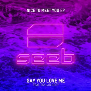 Seeb's new song #SayYouLoveMe featuring me out now!  BUY:: https://seeb.lnk.to/NiceToMeetYou #NiceToMeetYou