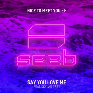 .@SeebMusic's new song #SayYouLoveMe featuring me out now!  BUY:: https://t.co/zH8TSAZqY8 #NiceToMeetYou https://t.co/oodJyKKlWj