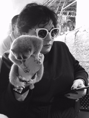 current mood mom texting w a lemur in hand https://t.co/1Jz05g7pEv