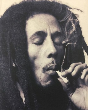 """Once you smoke herb, it's like your soul searching for freedom."" #bobmarleyquotes ."